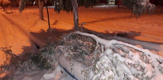 بارش اولین برف پاییزی۹۹در شهرستان تکاب